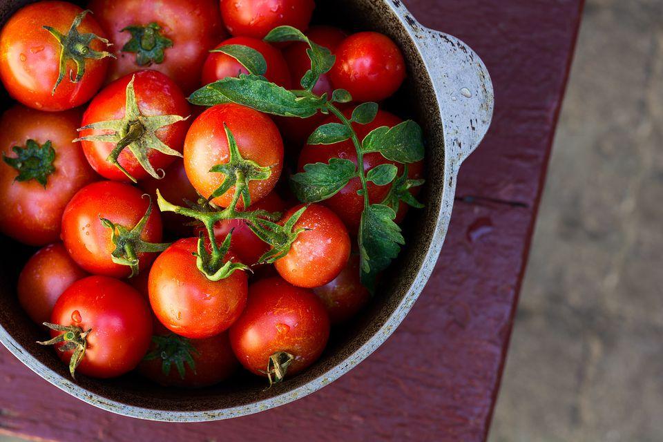 tomato-twenty20_76ff03fc-1675-499e-8c4c-fcc1af299efe-586686b83df78ce2c35cb982